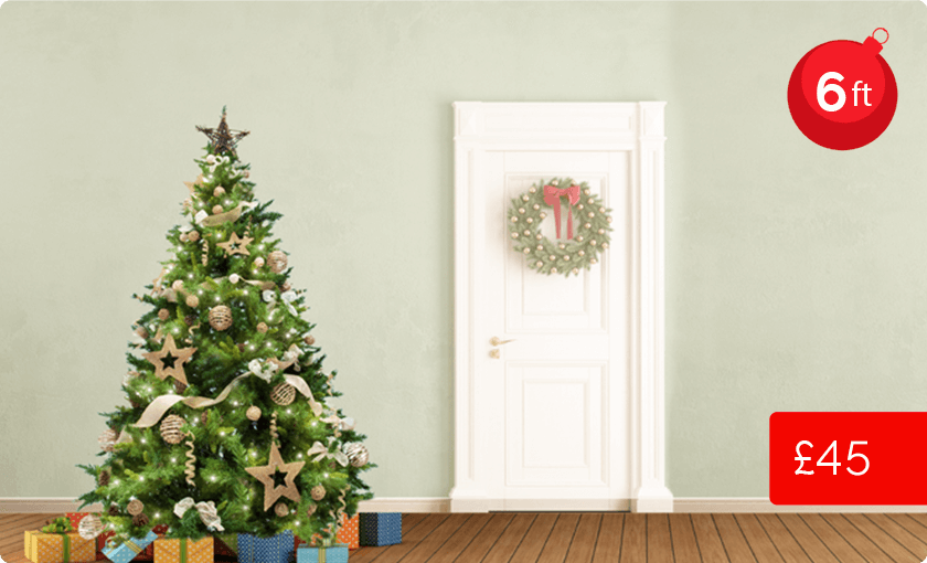 6ft Christmas tree price